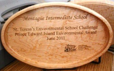 St Teresa's Environmental Challenge
