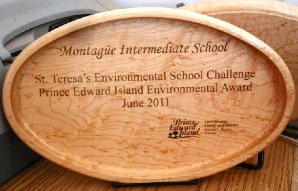 Award made from birds eye maple